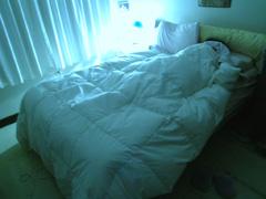 睡眠障害のイメージ画像